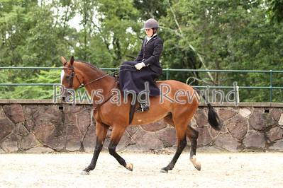 Ladies Hunter Side Saddle Hunter Hack