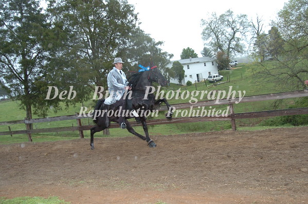 CL 9 AMATEUR 15.2 & UNDER SPECIALTY WALKING