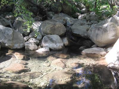 Matilija, Murietta Creek, 08-02-2008