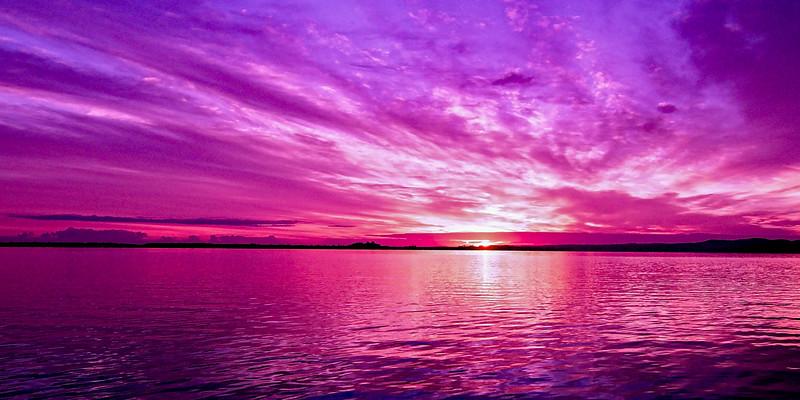 Purple Candy .Sunrise