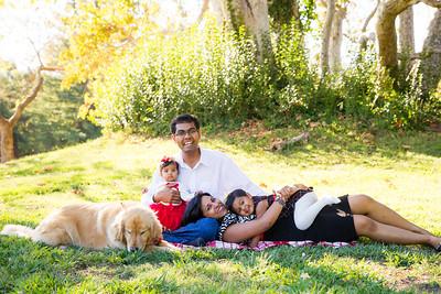 Thagaswamy Family 2015