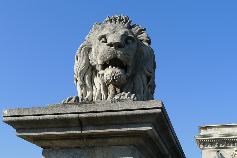 They like lions in Budapest