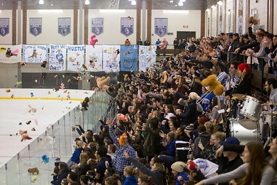 Ice Knights Crowd (2017)