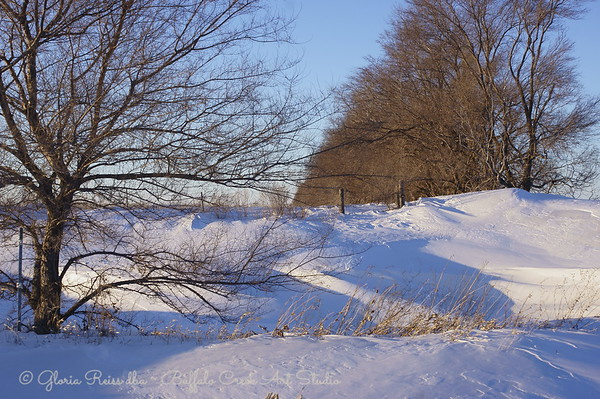 The lake in winter.