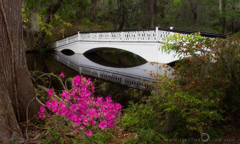 The Long White Bridge