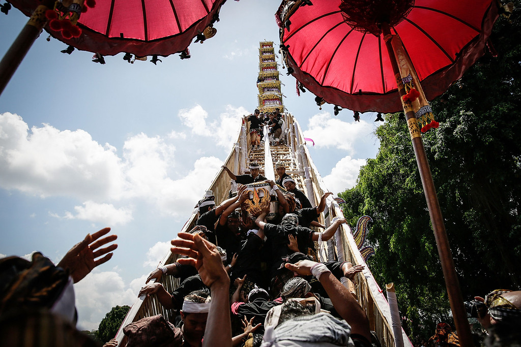 ". Ubud local carry the deceased body from the ""bade\"" (body carrying tower) to the bull-shaped sarcophagus at the cemetery during the Royal cremation ceremony on November 1, 2013 in Ubud, Bali, Indonesia. (Photo by Agung Parameswara/Getty Images)"