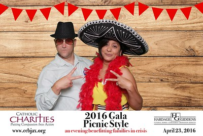 Catholic Charities 2016 Gala Picnic Style