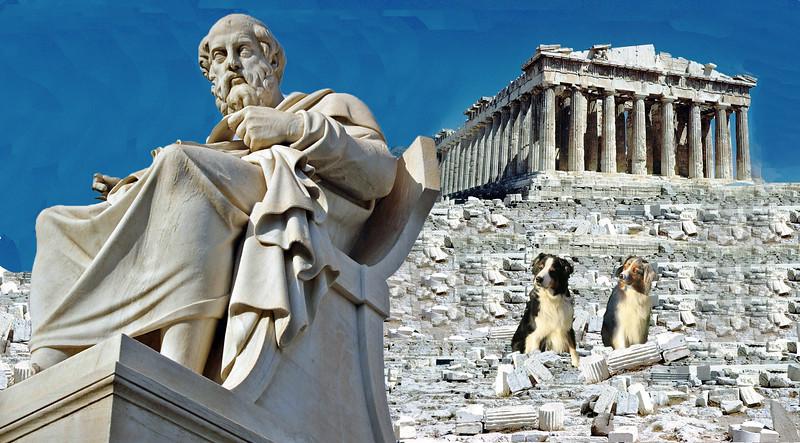 Plato.GaWy.jpg