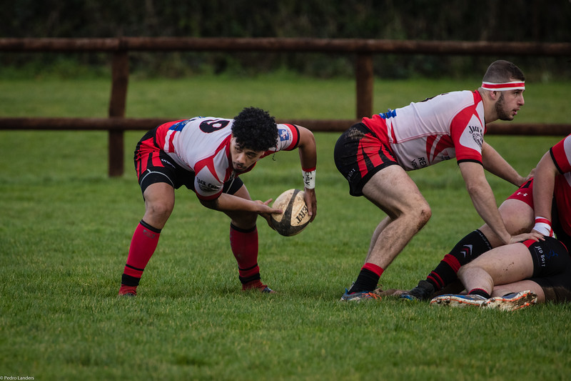 Scrum Half Action.jpg