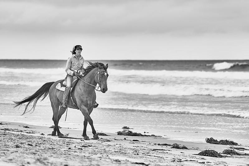 _DSC21070197@Catherine Aranda-LearnedOceanMeadowview©CAL. 1.jpg