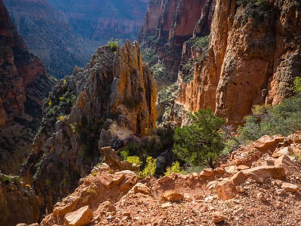 Grand Canyon visit
