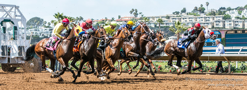 Pacific Classic at Del Mar