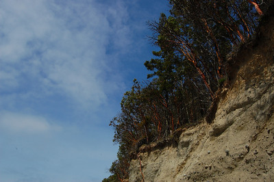 Foulweather Bluff Preserve