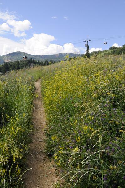 Park City Hike 07262009 132.jpg