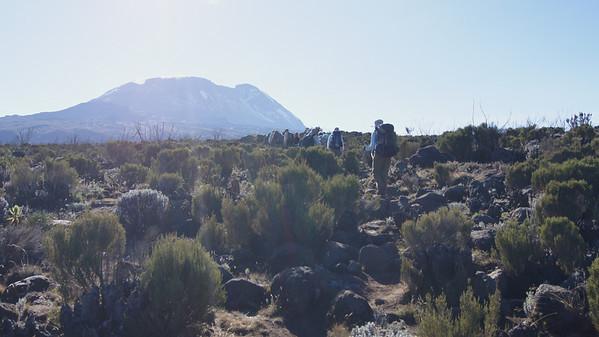 04 Kilimanjaro - to Shara 2 Camp