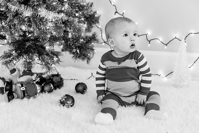 Abbey Christmas Mini