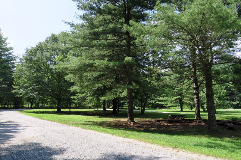 Holmes Educational State Forest Trailhead