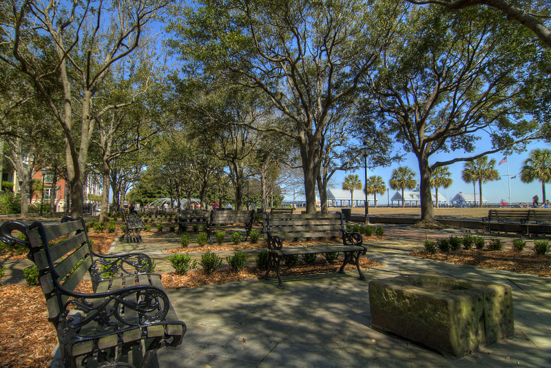 Large trees cover dozens of benches in Waterfront Park in downtown Charleston, SC on Saturday, March 9, 2013. Copyright 2013 Jason Barnette