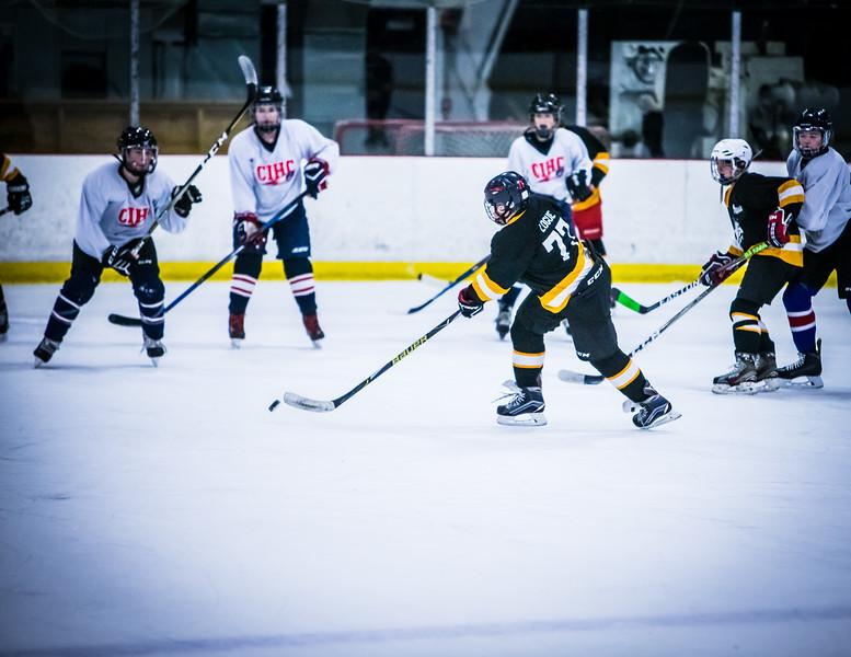 Bruins2-651.jpg