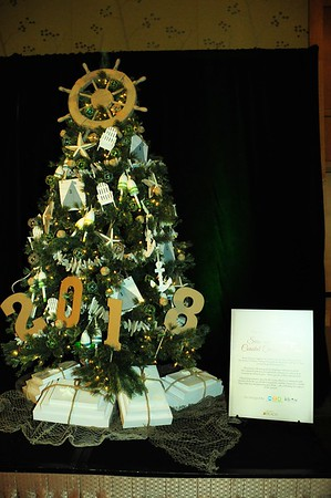 11.10.18 I Festival of Trees - Live Auction Part 3