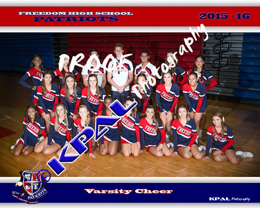 2015 Freedom High Cheer Team Photo