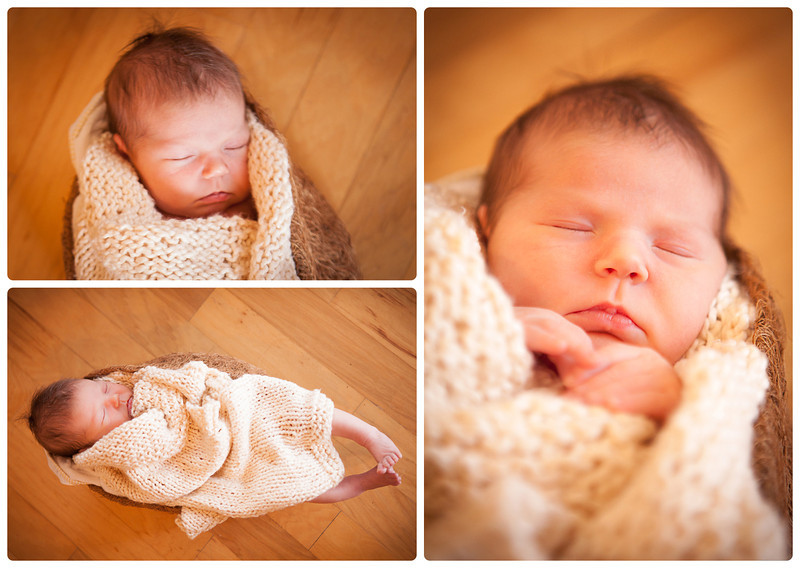 rockford newborn baby portraits