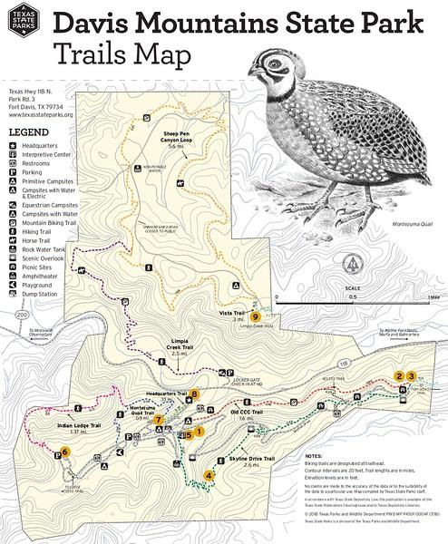 Davis Mountains State Park (Trails)