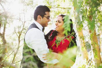 Zareen + Irshad - Engagement Session
