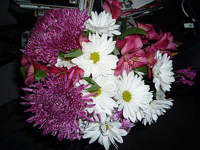 adam flowers.JPG