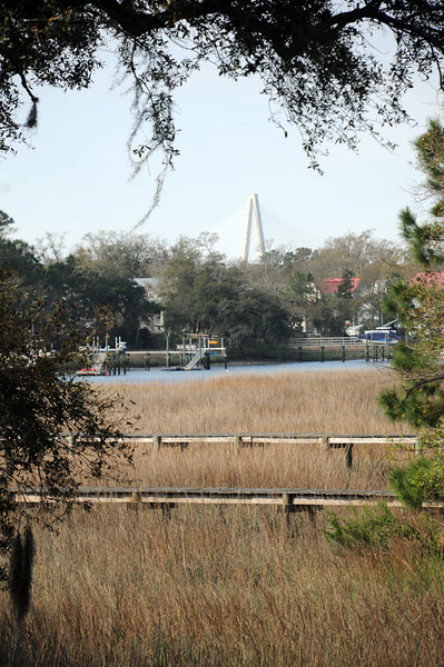 Bridge View 1 .jpg