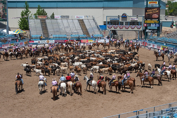 Reno Rodeo Cattle Drive - 2011