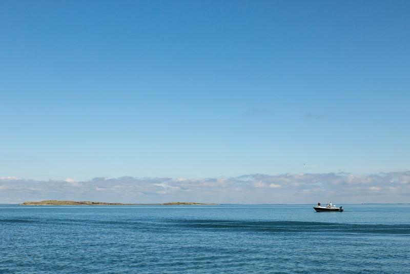 flyfishingnewengland.westportfall15-27.jpg