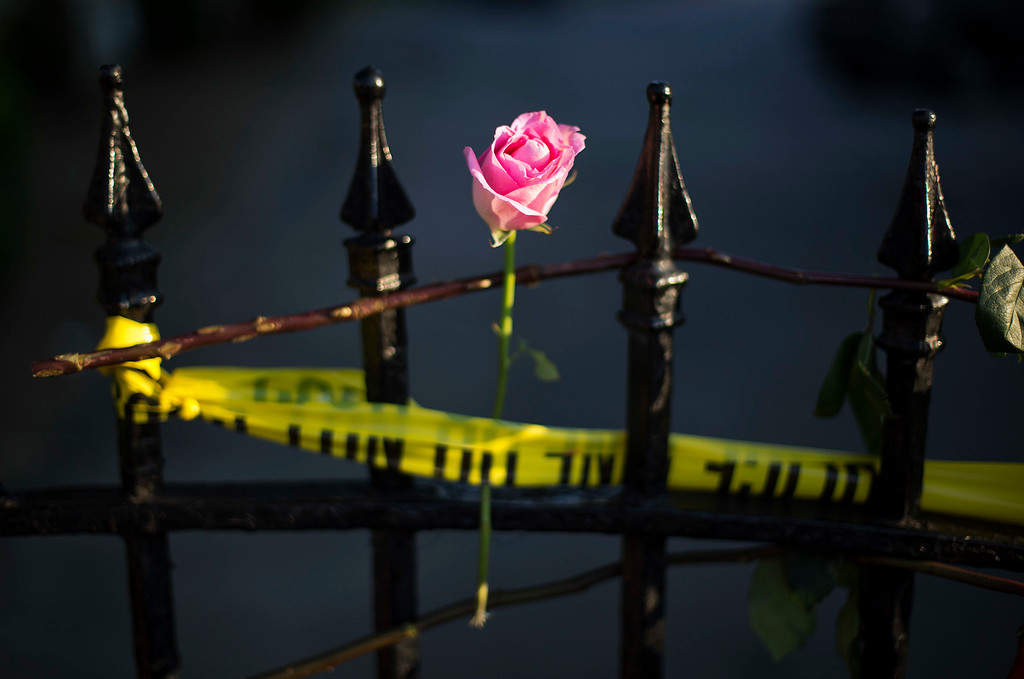 . A rose is affixed to a fence along a sidewalk memorial in memory of the shooting victims in front of Emanuel AME Church Saturday, June 20, 2015, in Charleston, S.C. (AP Photo/David Goldman)