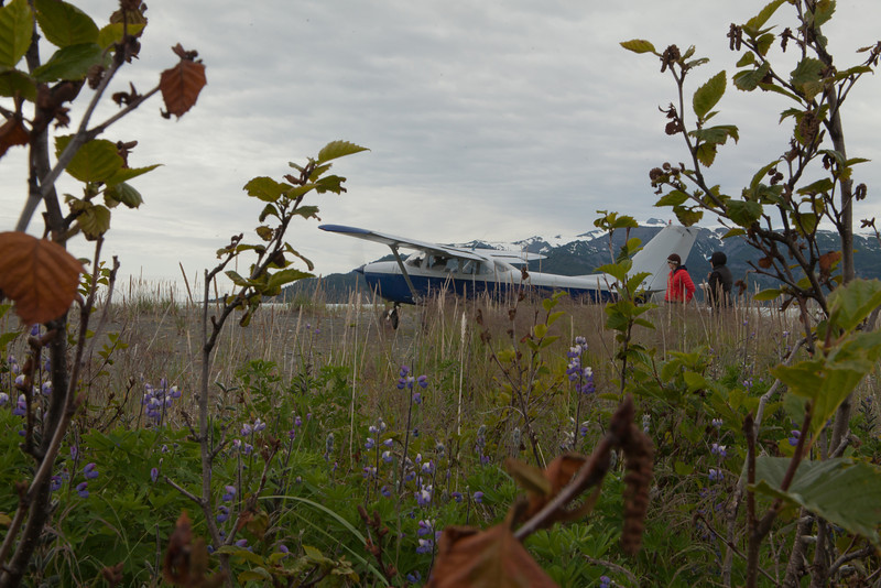 Alaska Icy Bay-3979.jpg