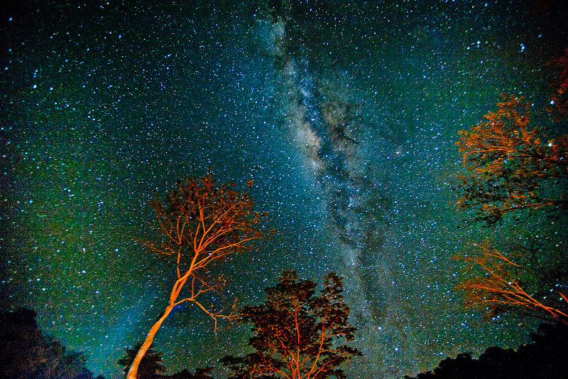 The Milky Way as seen from the Bolivian Jungle at Tsimane Lodge
