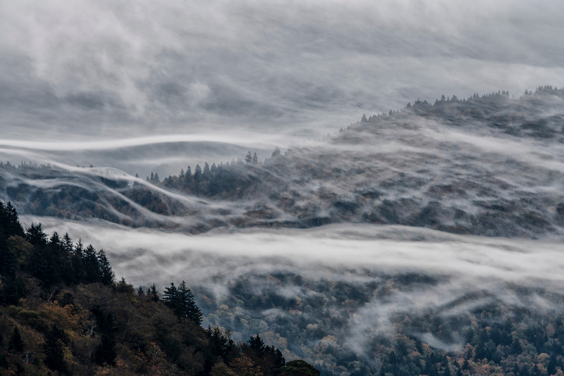 Fog on the Blue Ridge.jpg