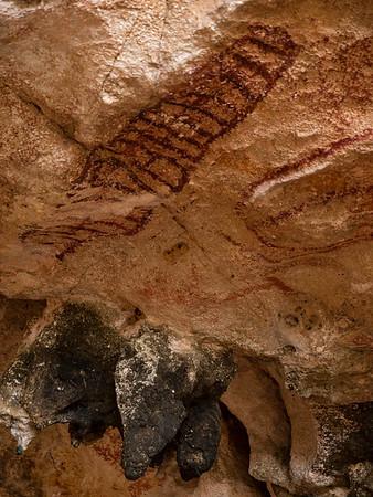 Walking with the Speurneuzen - Caves of Savonet