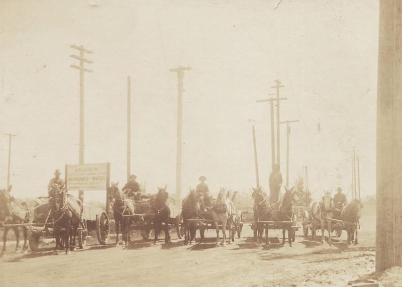 Anaheim-FiveHorse-DrawnWagons-1908.jpg