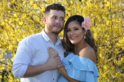 Ana's Enchanted Forest Baby Shower - April 22, 2018