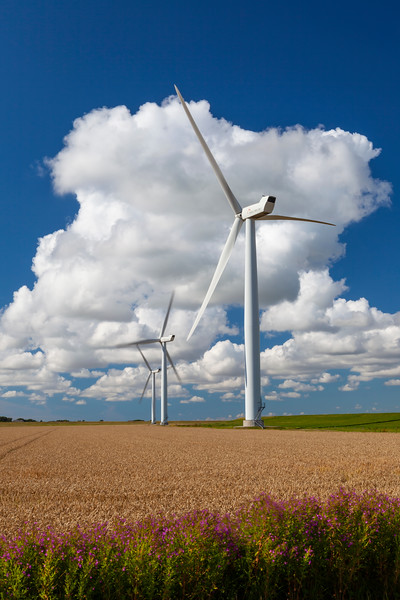 Tech-Windturbine-2010-08-03-_MG_2454-Danapix.jpg
