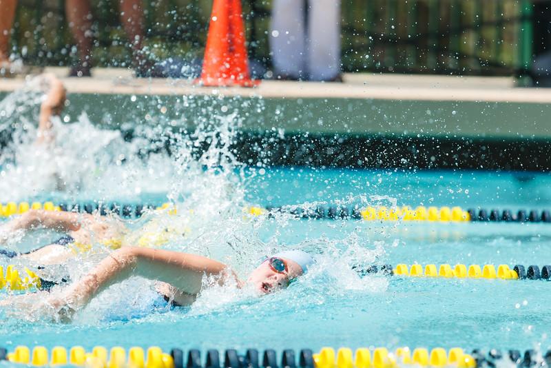 2015.08.22 FHCC Swim Finals 0374.jpg
