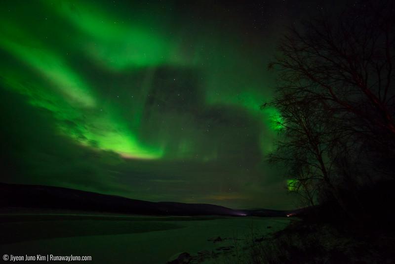 Nov.12_Northern Lights-6106834.jpg