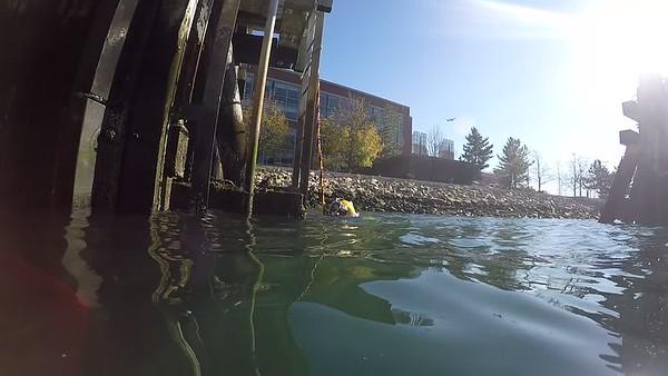 URT Surface Air Diving