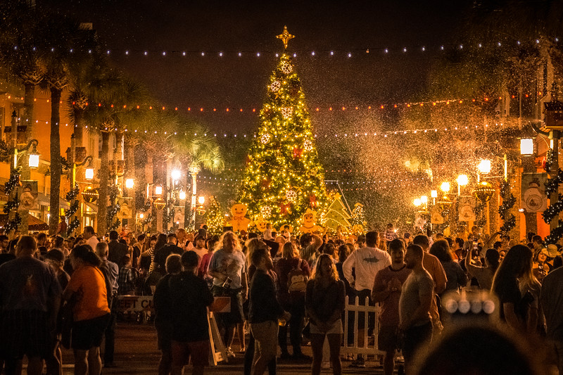 """A huge roar from the crowd when they lit the tree and let the """"snow"""" fall"""