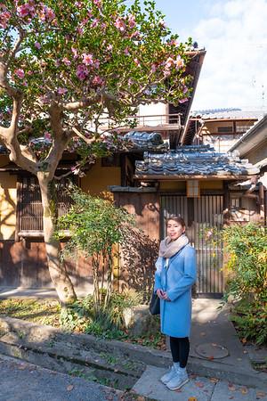 Miyuki Kyoto Koyo 2018