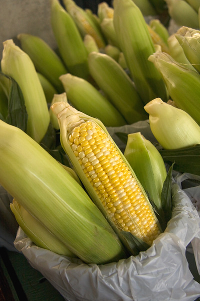 fresh-corn_3805596423_o.jpg