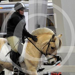2013.11.9 Equine Affaire - Fjords