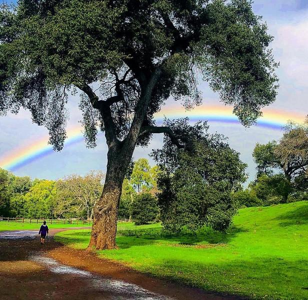 Walking towards the Rainbow