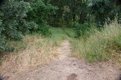 2019-05-18 Westside trail conditions