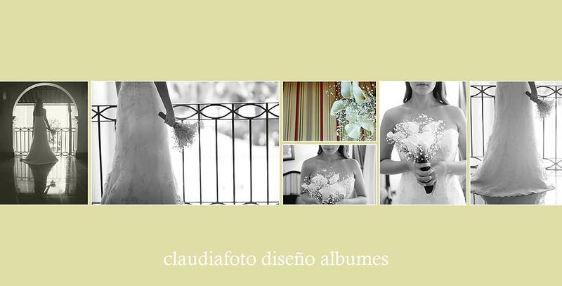 Albumes Diagramados
